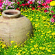 Mieszanka roślin jednorocznych oraz bylin ŁĄKA KWIETNA