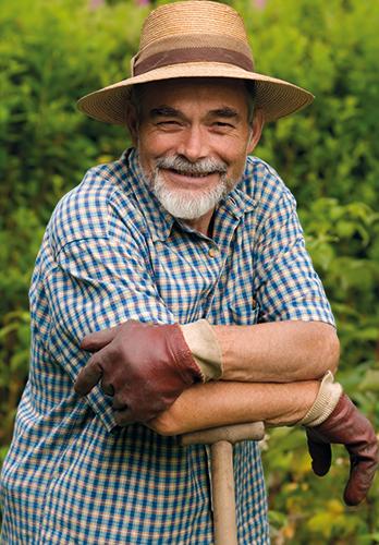 Hortnas - Nasiona i mieszanki traw gazonowych. Profesjonalne nawozy do trawy